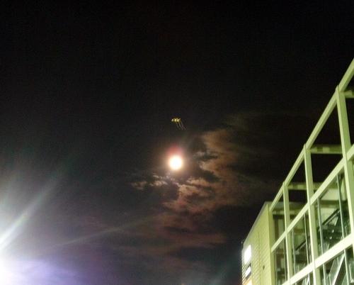 ブルームーンの夜